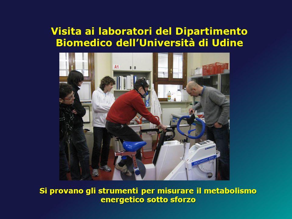 Visita ai laboratori del Dipartimento Biomedico dell'Università di Udine