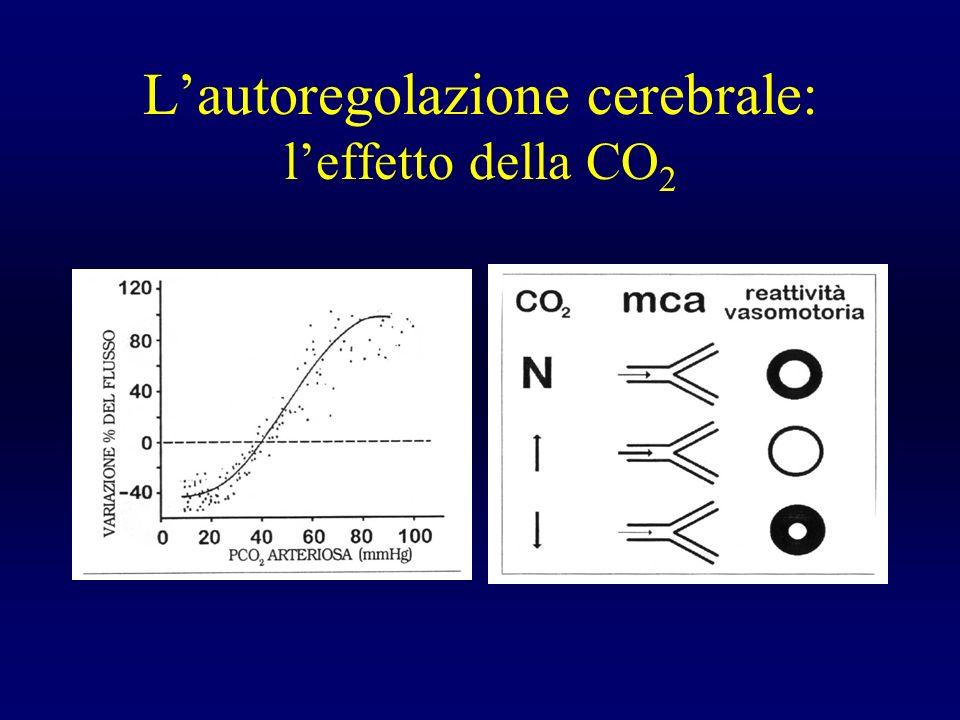 L'autoregolazione cerebrale: l'effetto della CO2