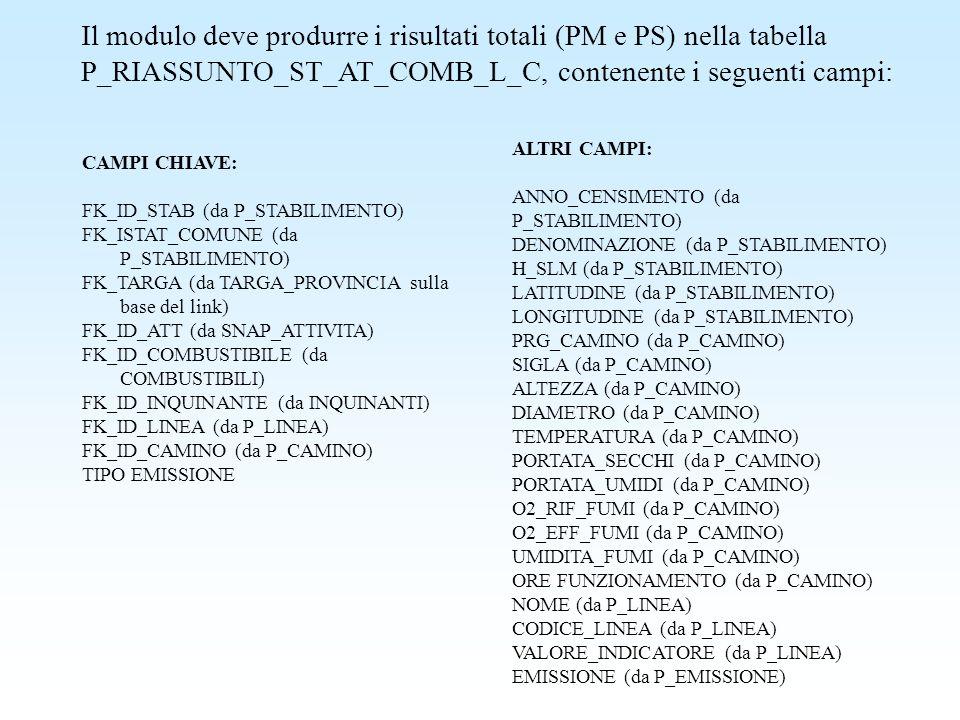 Il modulo deve produrre i risultati totali (PM e PS) nella tabella P_RIASSUNTO_ST_AT_COMB_L_C, contenente i seguenti campi: