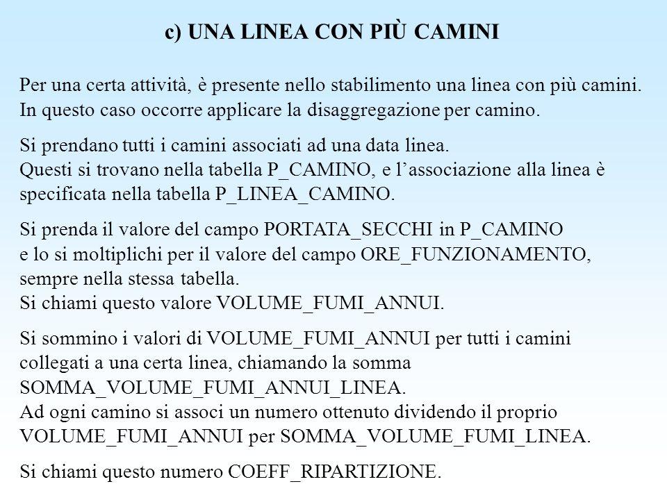 c) UNA LINEA CON PIÙ CAMINI