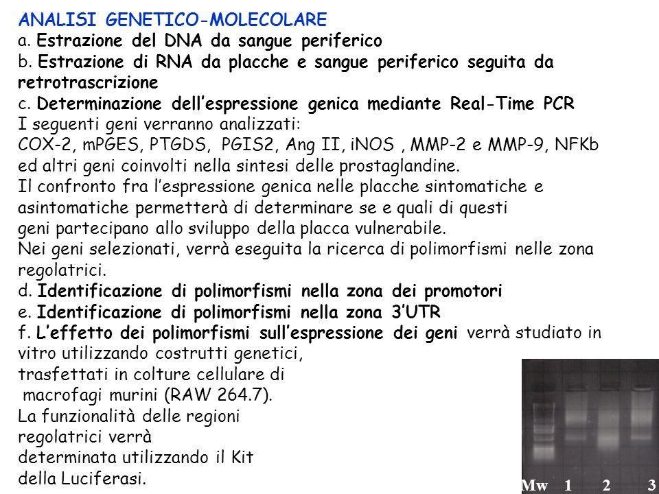 ANALISI GENETICO-MOLECOLARE