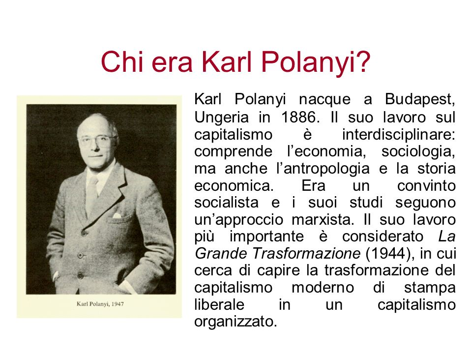 Chi era Karl Polanyi