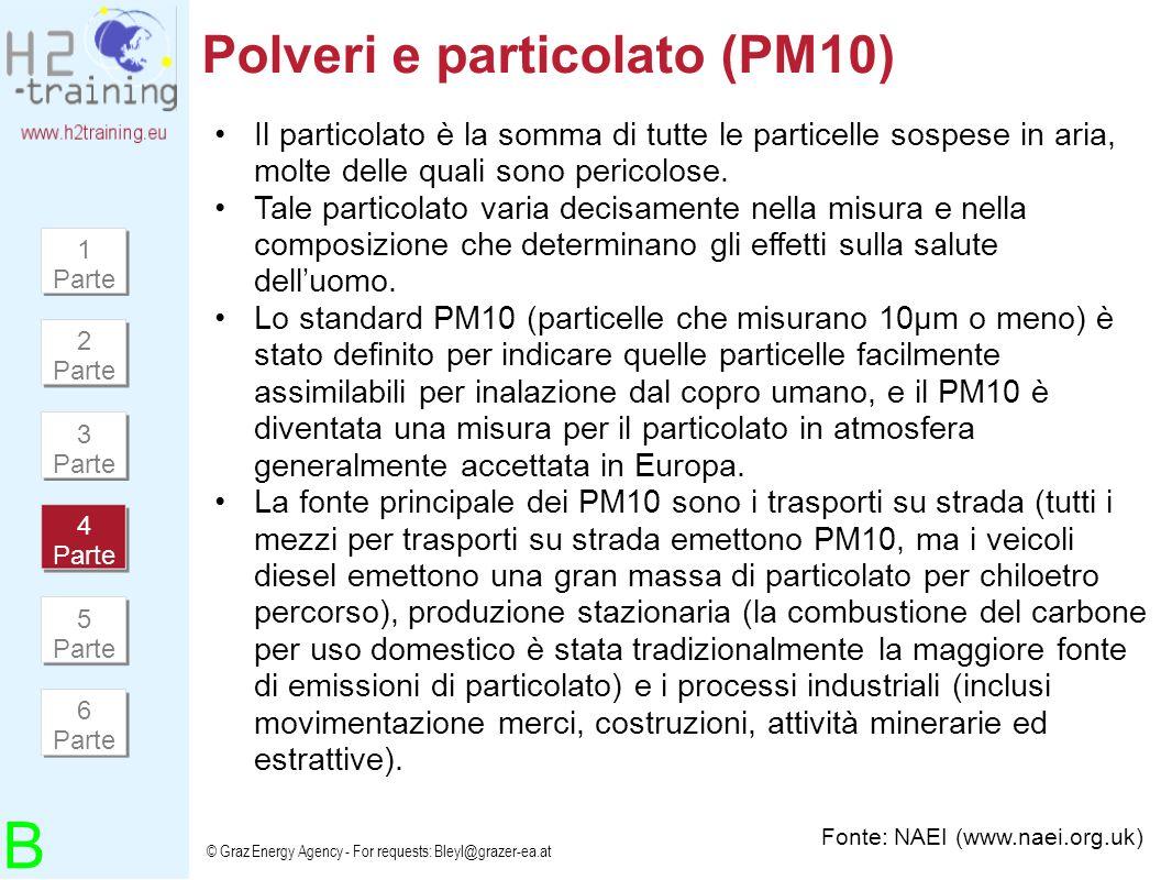 Polveri e particolato (PM10)
