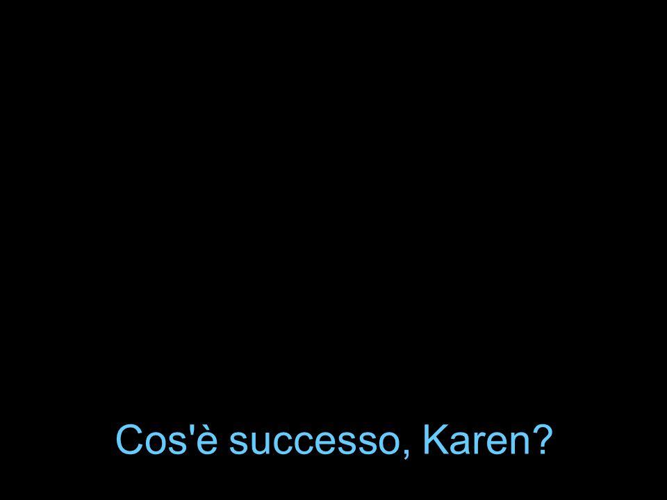 Cos è successo, Karen