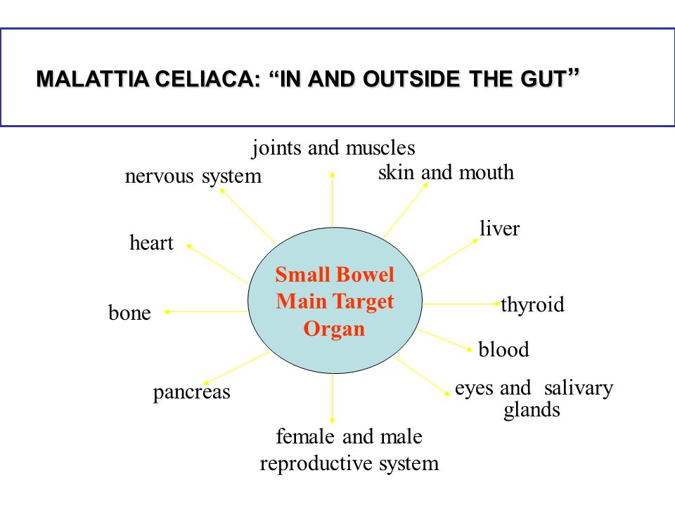 MALATTIA CELIACA: IN AND OUTSIDE THE GUT