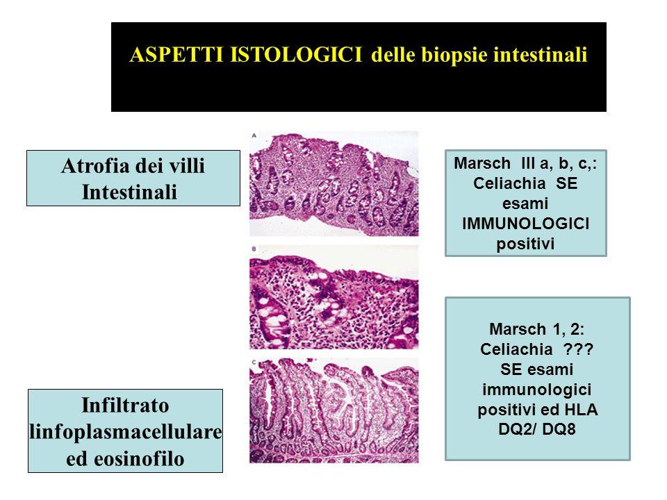 ASPETTI ISTOLOGICI delle biopsie intestinali