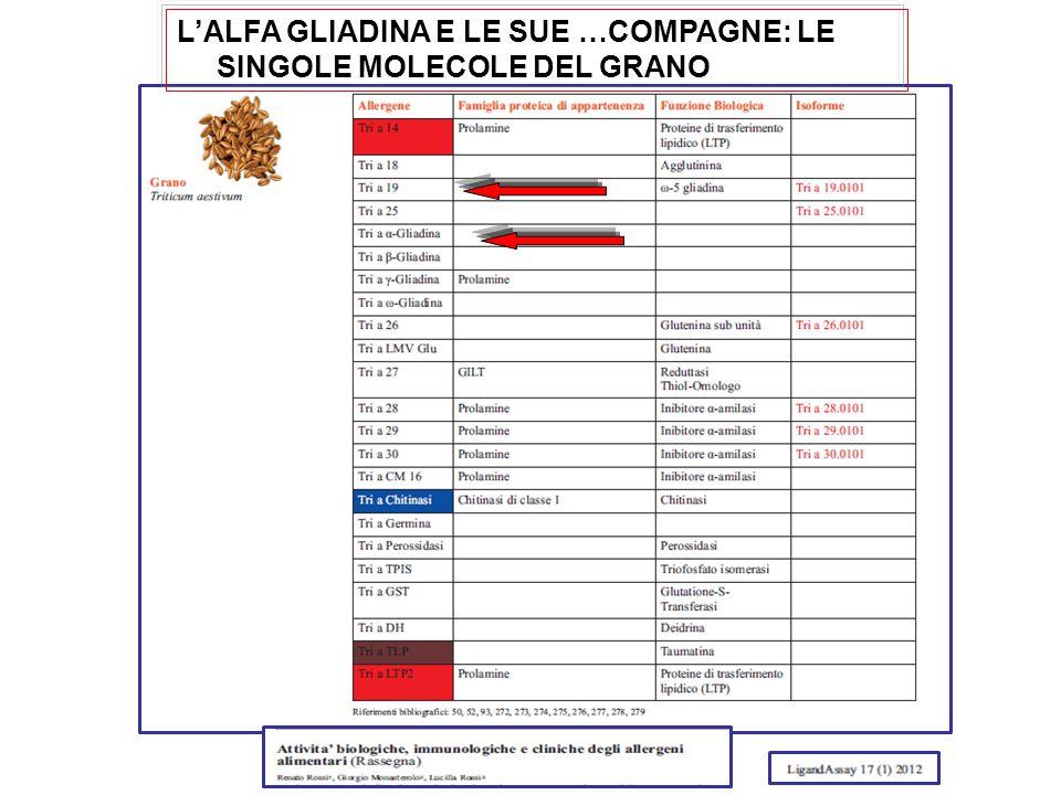 L'ALFA GLIADINA E LE SUE …COMPAGNE: LE SINGOLE MOLECOLE DEL GRANO