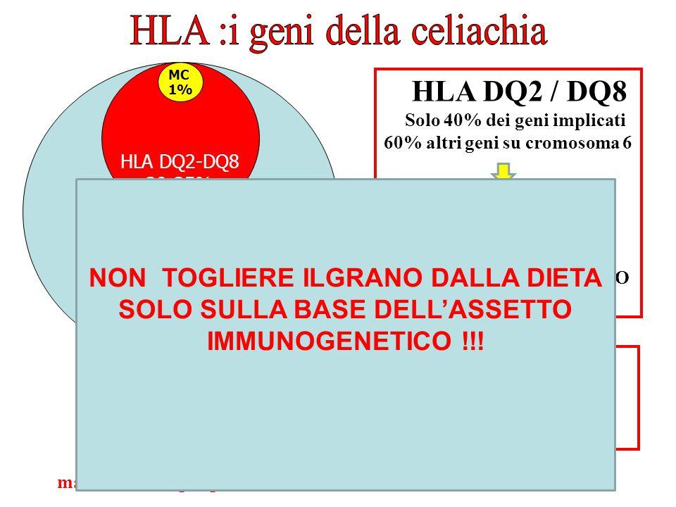 HLA :i geni della celiachia