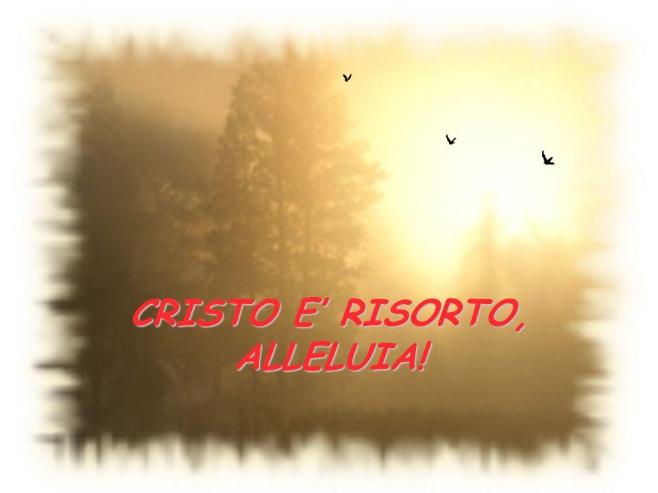 CRISTO E' RISORTO, ALLELUIA!