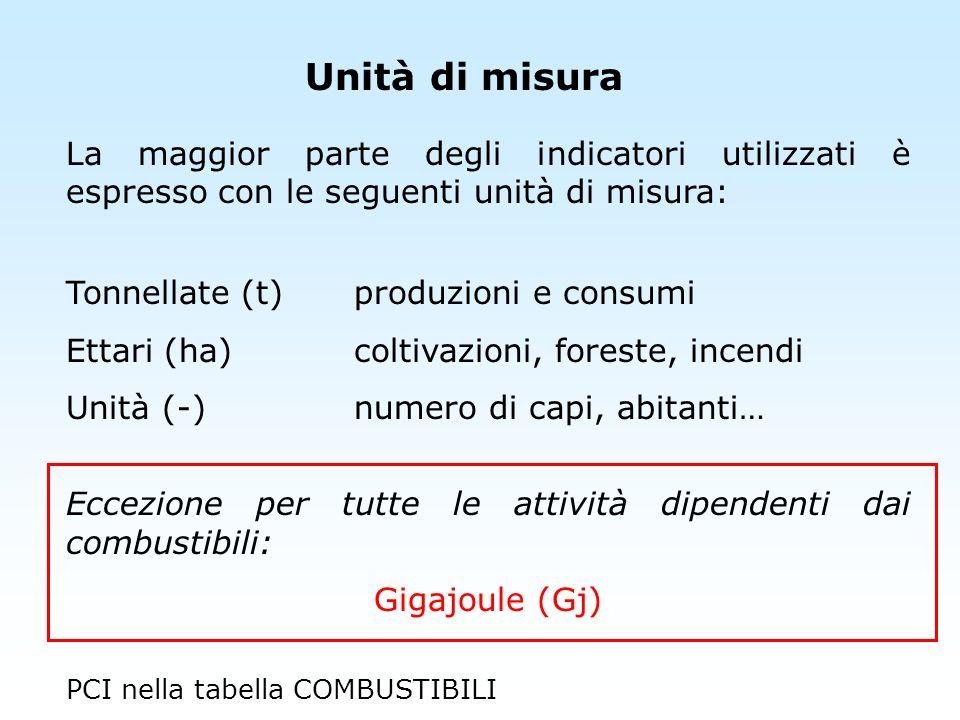 Unità di misura La maggior parte degli indicatori utilizzati è espresso con le seguenti unità di misura: