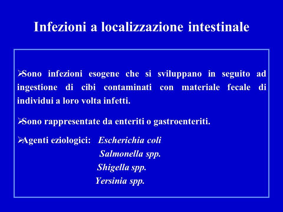 Infezioni a localizzazione intestinale