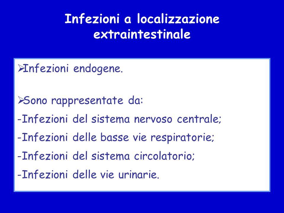 Infezioni a localizzazione extraintestinale