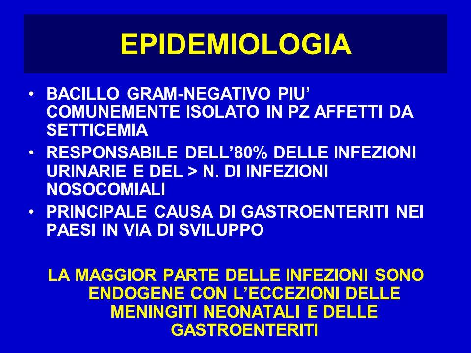 EPIDEMIOLOGIA BACILLO GRAM-NEGATIVO PIU' COMUNEMENTE ISOLATO IN PZ AFFETTI DA SETTICEMIA.