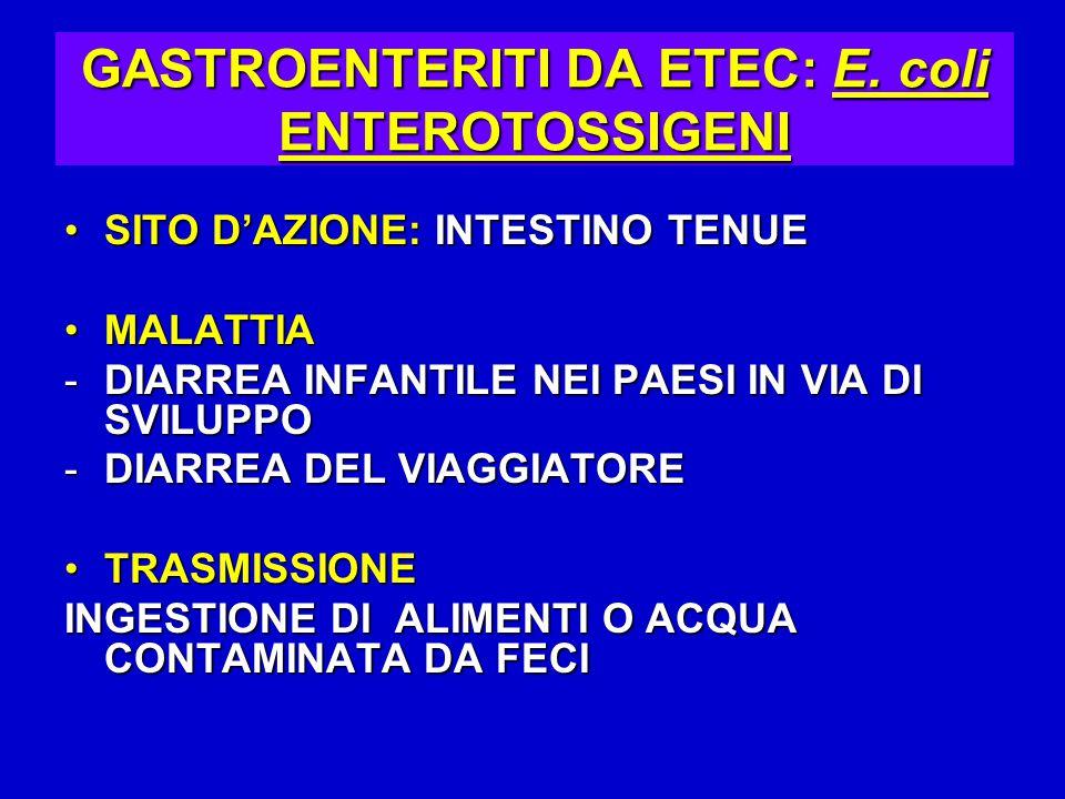 GASTROENTERITI DA ETEC: E. coli ENTEROTOSSIGENI