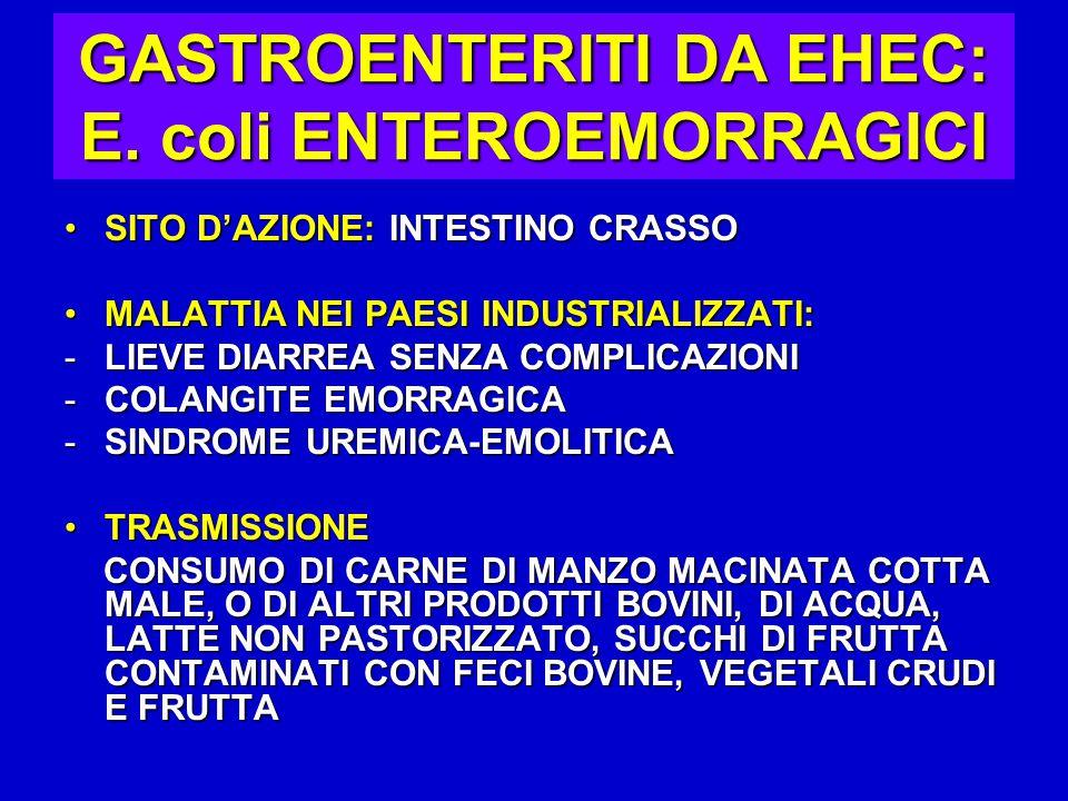 GASTROENTERITI DA EHEC: E. coli ENTEROEMORRAGICI