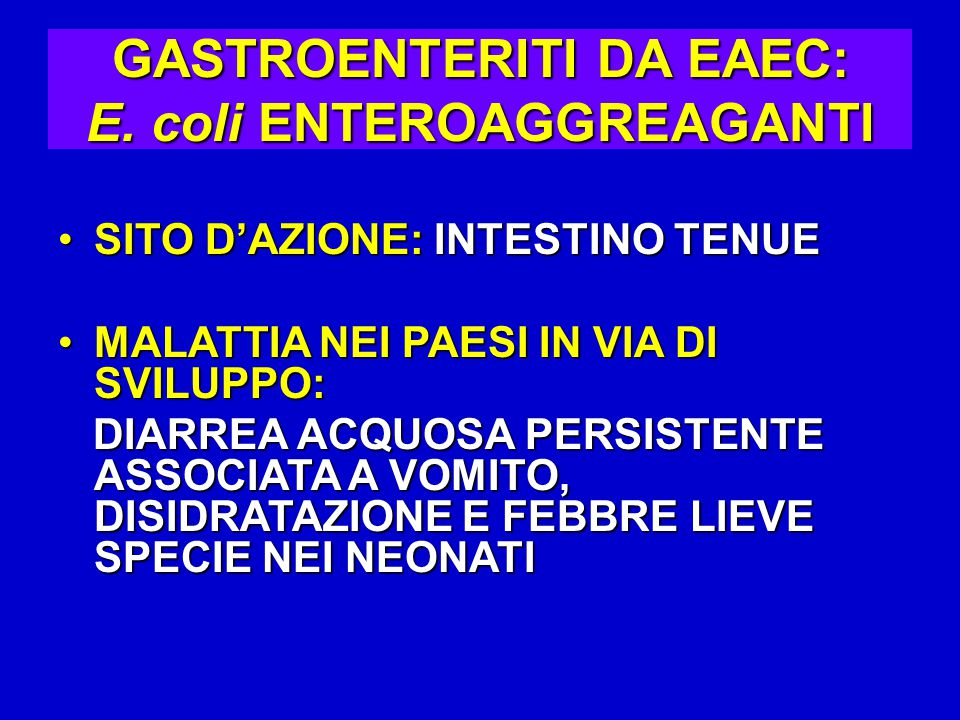 GASTROENTERITI DA EAEC: E. coli ENTEROAGGREAGANTI