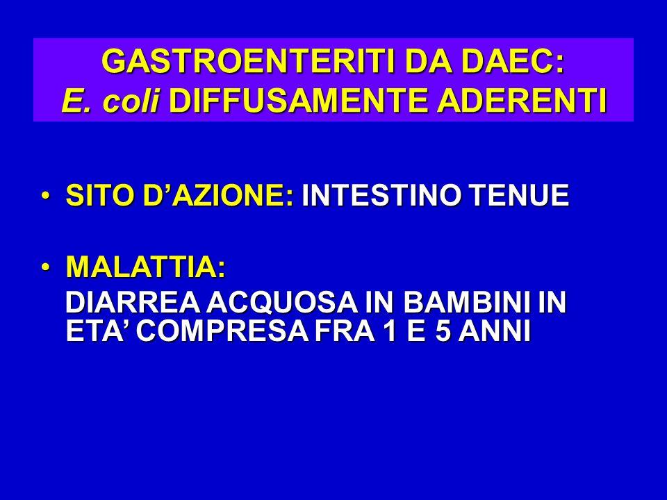 GASTROENTERITI DA DAEC: E. coli DIFFUSAMENTE ADERENTI