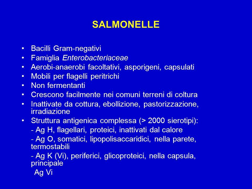 SALMONELLE Bacilli Gram-negativi Famiglia Enterobacteriaceae