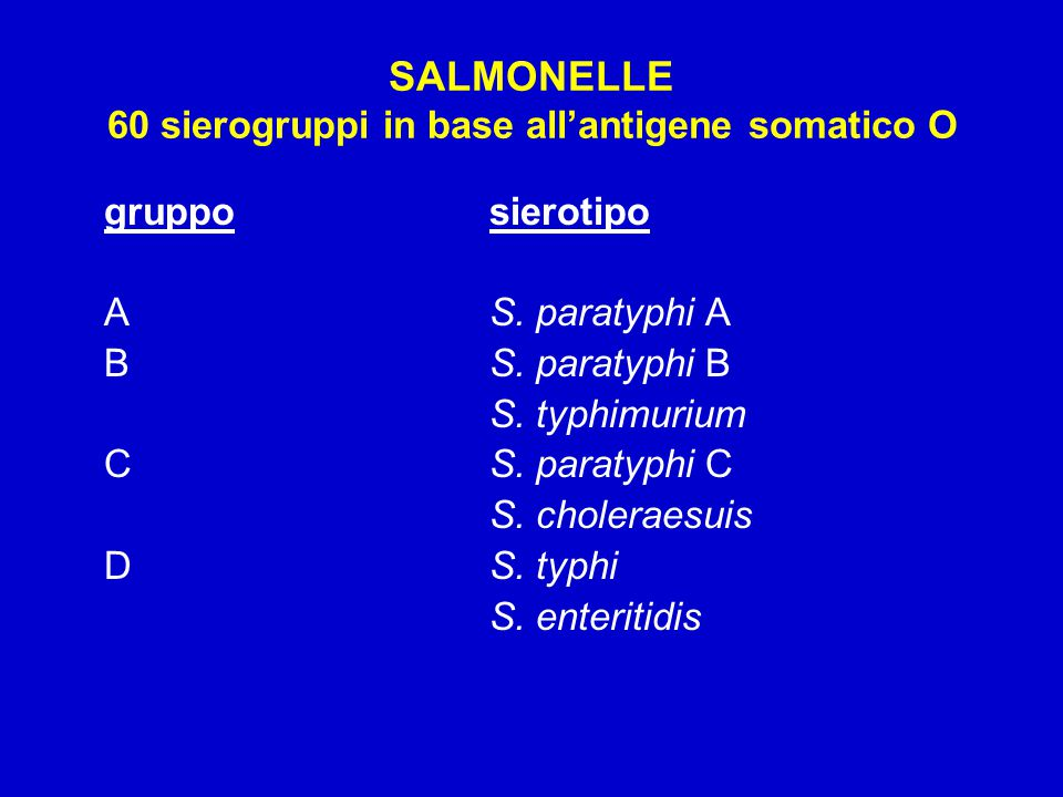 SALMONELLE 60 sierogruppi in base all'antigene somatico O