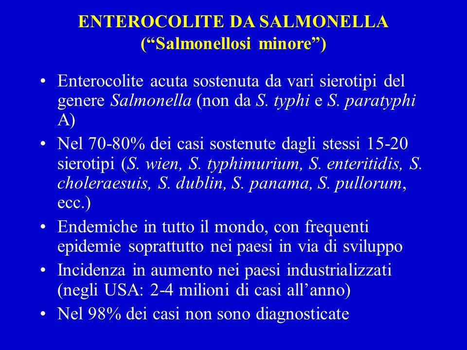 ENTEROCOLITE DA SALMONELLA ( Salmonellosi minore )
