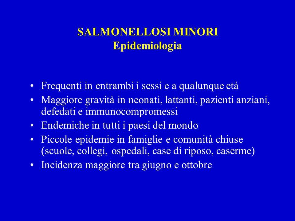 SALMONELLOSI MINORI Epidemiologia