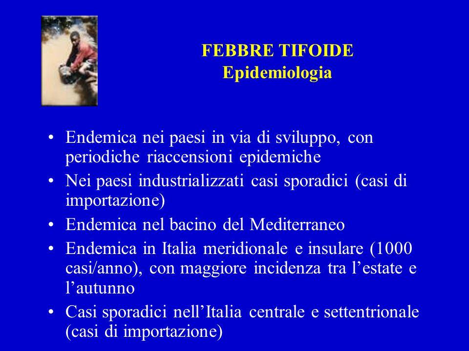 FEBBRE TIFOIDE Epidemiologia. Endemica nei paesi in via di sviluppo, con periodiche riaccensioni epidemiche.