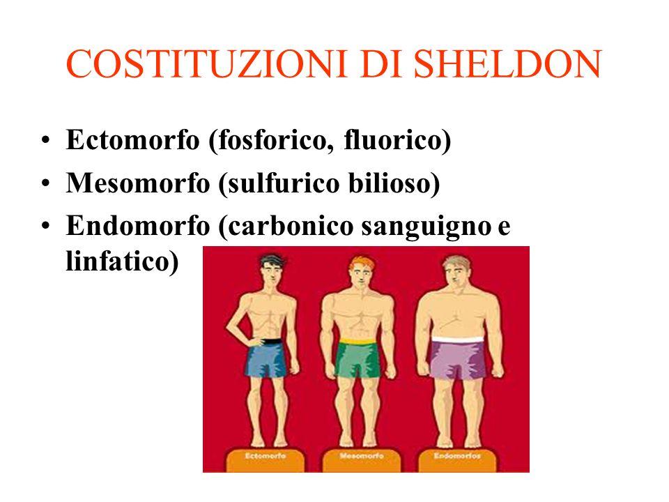 COSTITUZIONI DI SHELDON