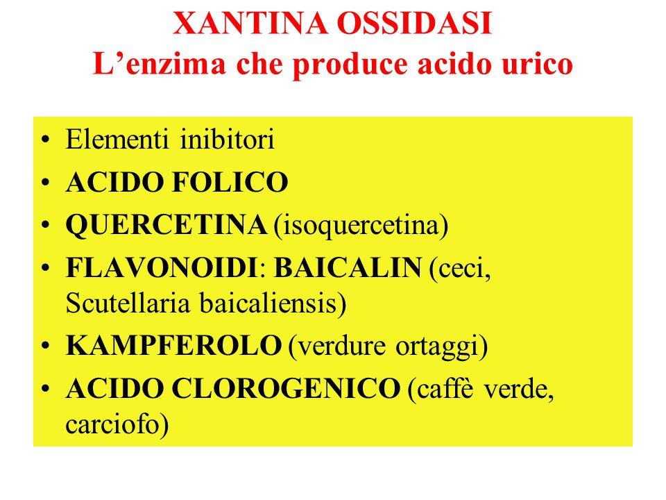 XANTINA OSSIDASI L'enzima che produce acido urico