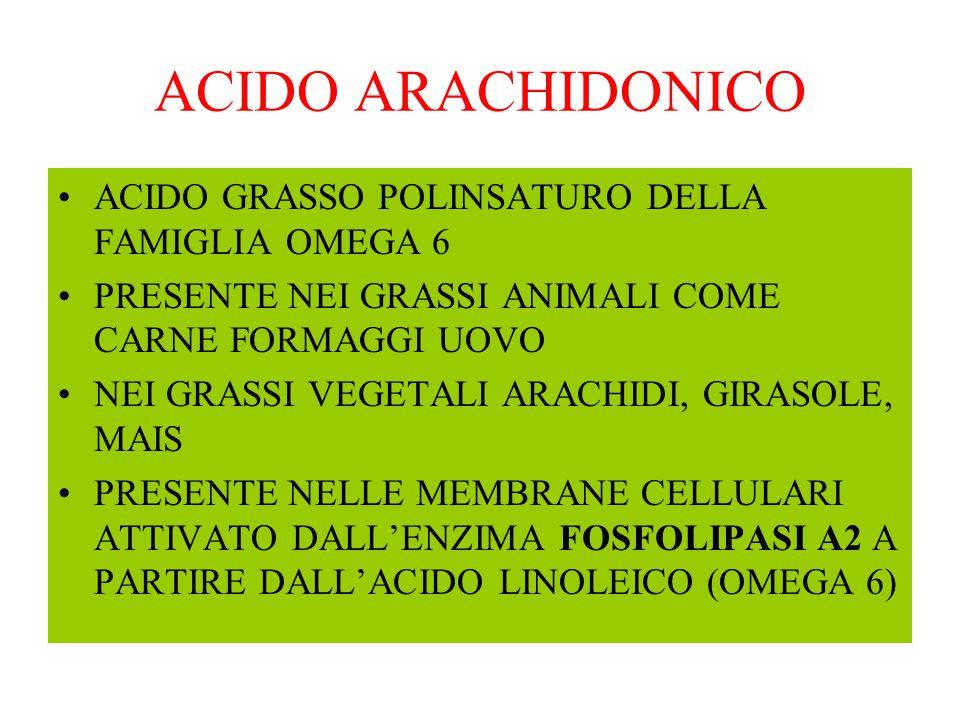 ACIDO ARACHIDONICO ACIDO GRASSO POLINSATURO DELLA FAMIGLIA OMEGA 6