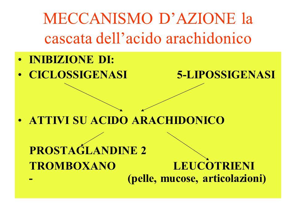 MECCANISMO D'AZIONE la cascata dell'acido arachidonico