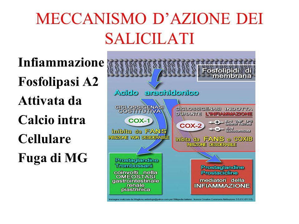 MECCANISMO D'AZIONE DEI SALICILATI