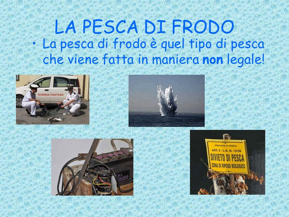 LA PESCA DI FRODO La pesca di frodo è quel tipo di pesca che viene fatta in maniera non legale!