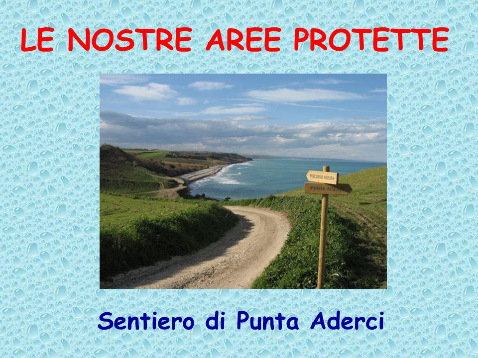 LE NOSTRE AREE PROTETTE