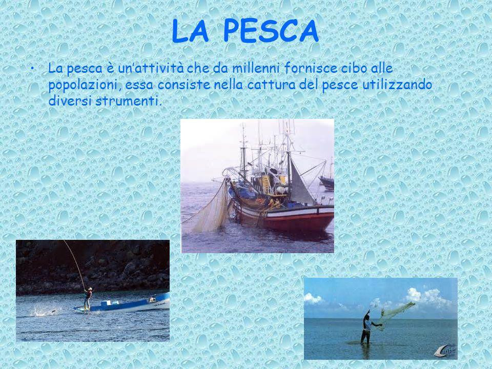 LA PESCA La pesca è un'attività che da millenni fornisce cibo alle popolazioni, essa consiste nella cattura del pesce utilizzando diversi strumenti.