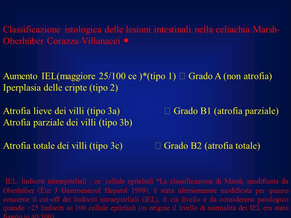 Classificazione istologica delle lesioni intestinali nella celiachia Marsh-Oberhüber Corazza-Villanacci ●