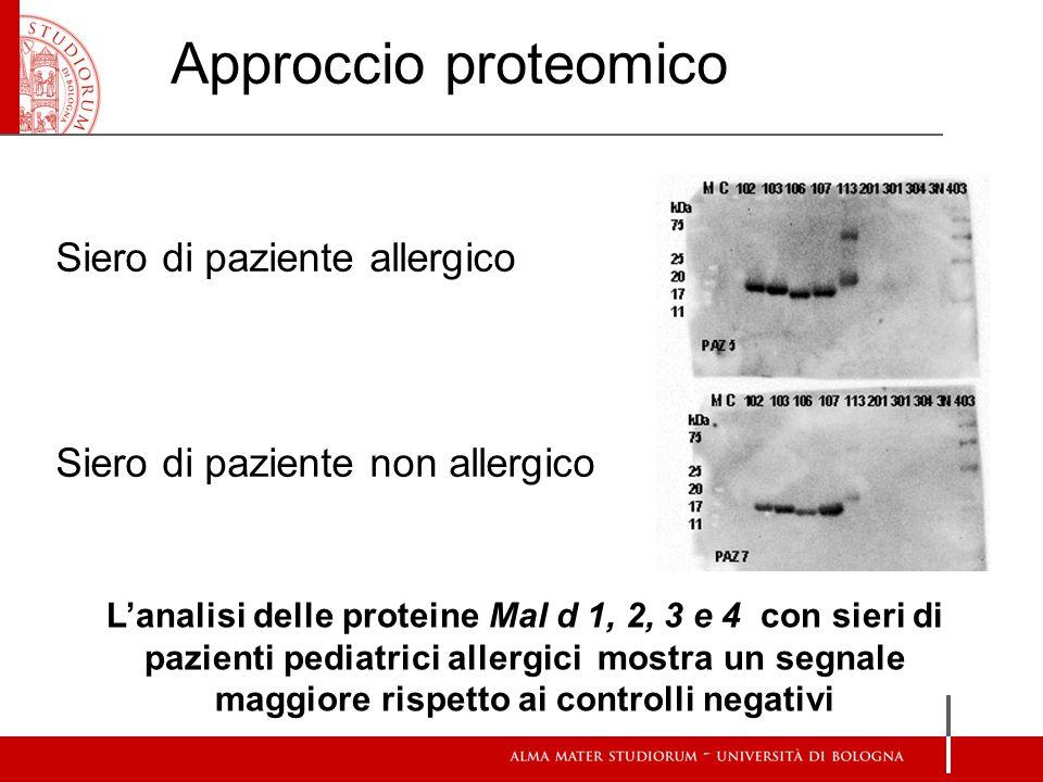Approccio proteomico Siero di paziente allergico