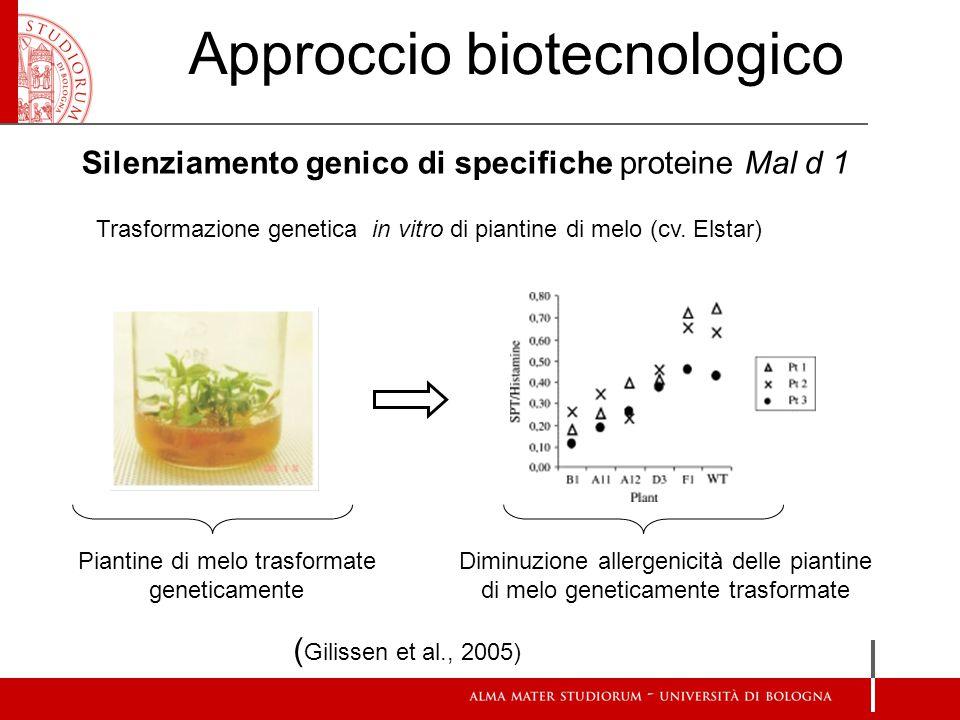 Approccio biotecnologico
