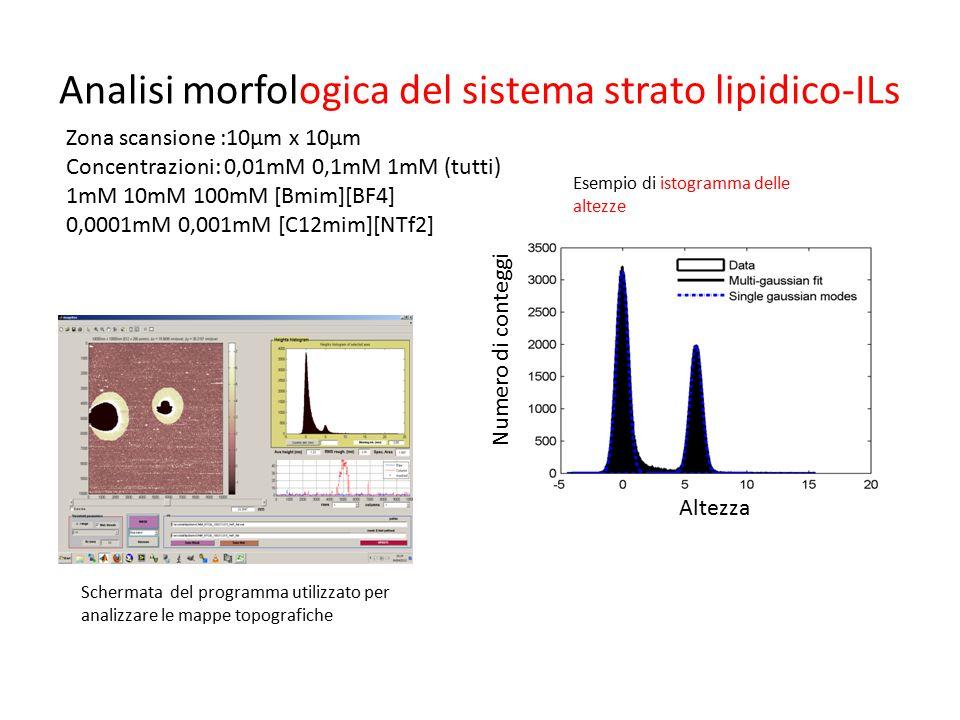 Analisi morfologica del sistema strato lipidico-ILs