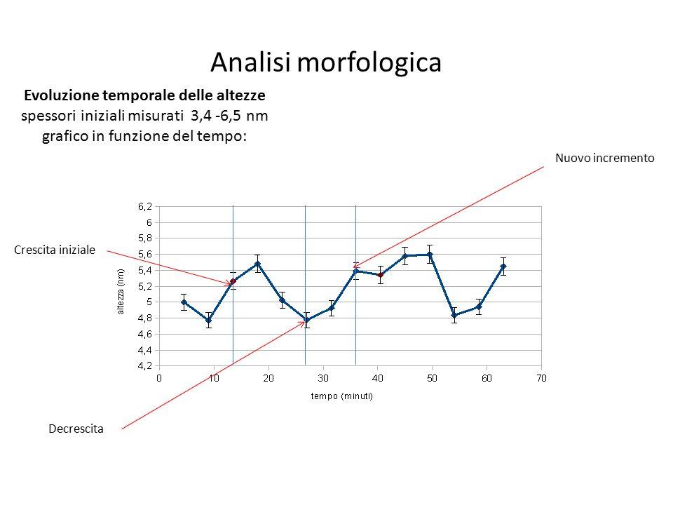 Analisi morfologica Evoluzione temporale delle altezze spessori iniziali misurati 3,4 -6,5 nm grafico in funzione del tempo: