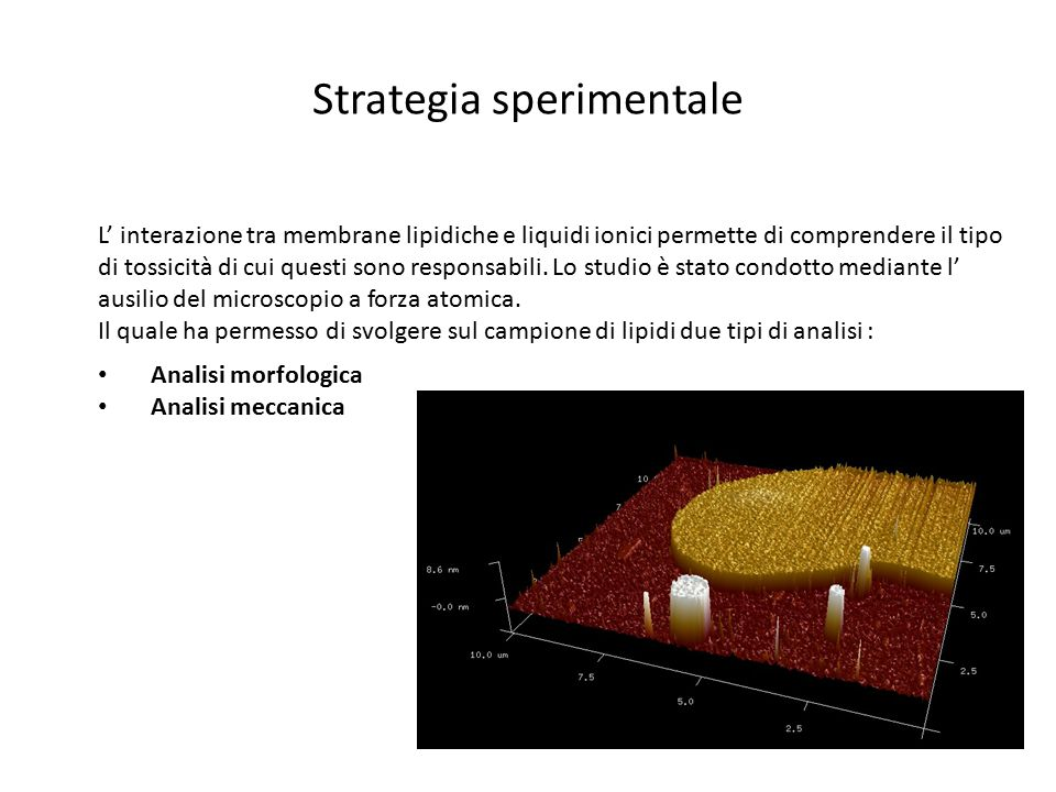 Strategia sperimentale
