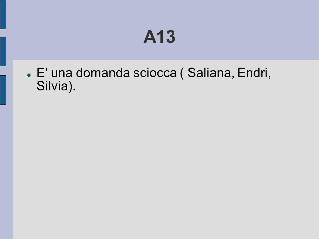 A13 E una domanda sciocca ( Saliana, Endri, Silvia).