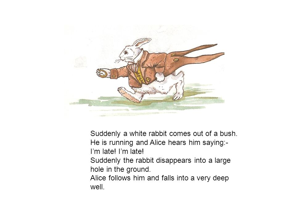 Suddenly a white rabbit comes out of a bush.