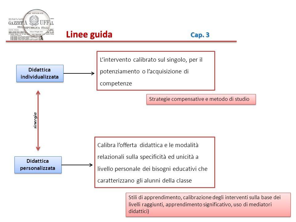 Didattica individualizzata Didattica personalizzata