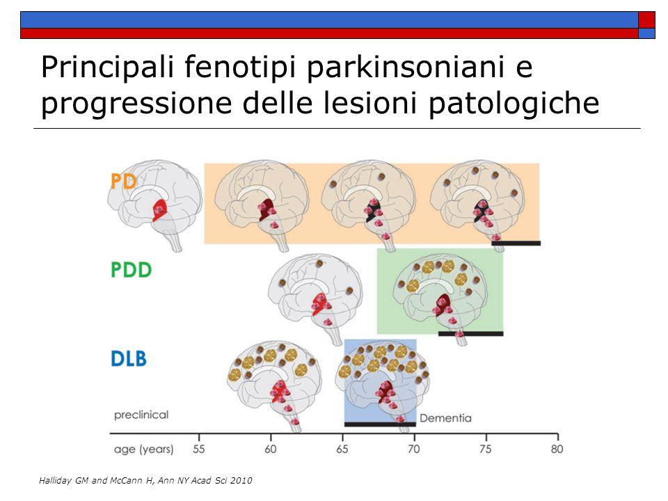 Principali fenotipi parkinsoniani e progressione delle lesioni patologiche