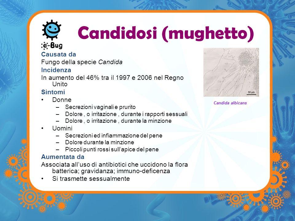 Candidosi (mughetto) Causata da Fungo della specie Candida Incidenza