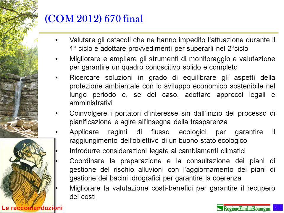 (COM 2012) 670 final Valutare gli ostacoli che ne hanno impedito l'attuazione durante il 1° ciclo e adottare provvedimenti per superarli nel 2°ciclo.