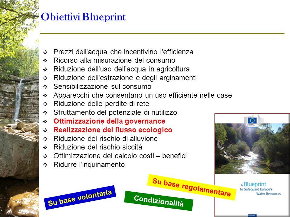 Obiettivi Blueprint Prezzi dell'acqua che incentivino l'efficienza