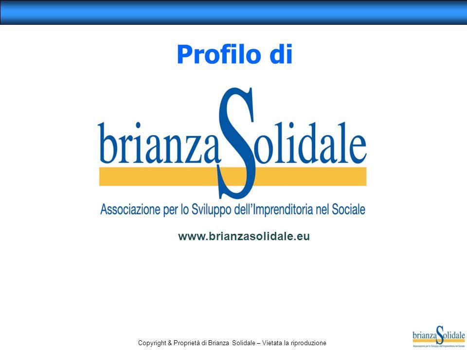 Profilo di www.brianzasolidale.eu