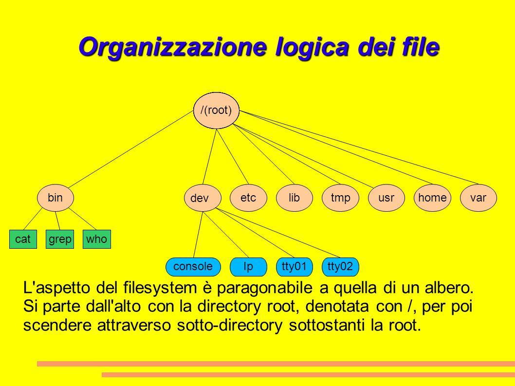 Organizzazione logica dei file