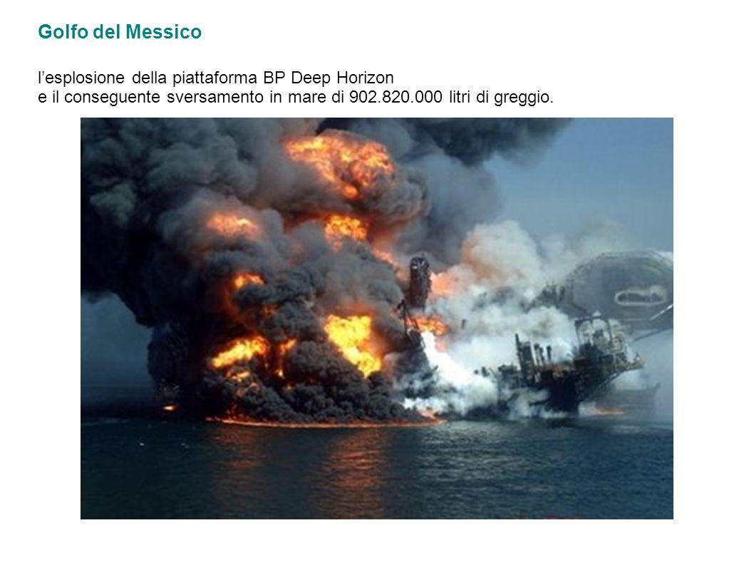 Golfo del Messico l'esplosione della piattaforma BP Deep Horizon e il conseguente sversamento in mare di 902.820.000 litri di greggio.